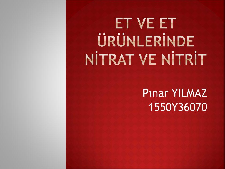 Pınar YILMAZ 1550Y36070