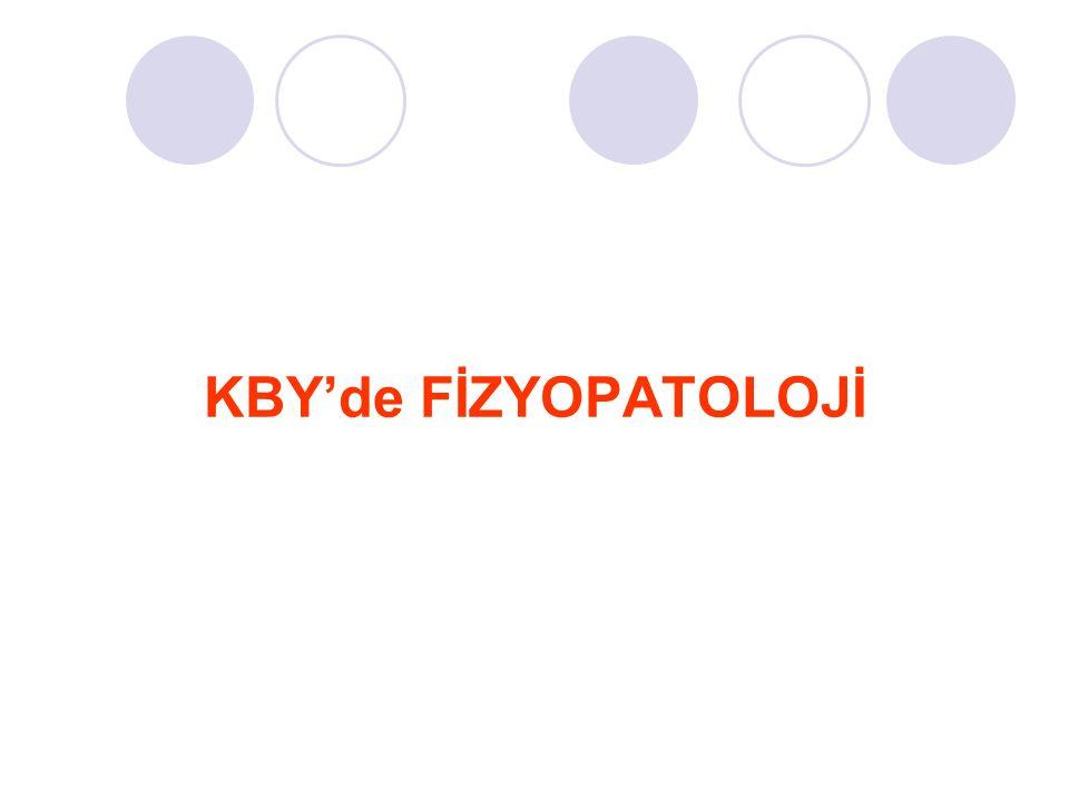 KBY'de FİZYOPATOLOJİ