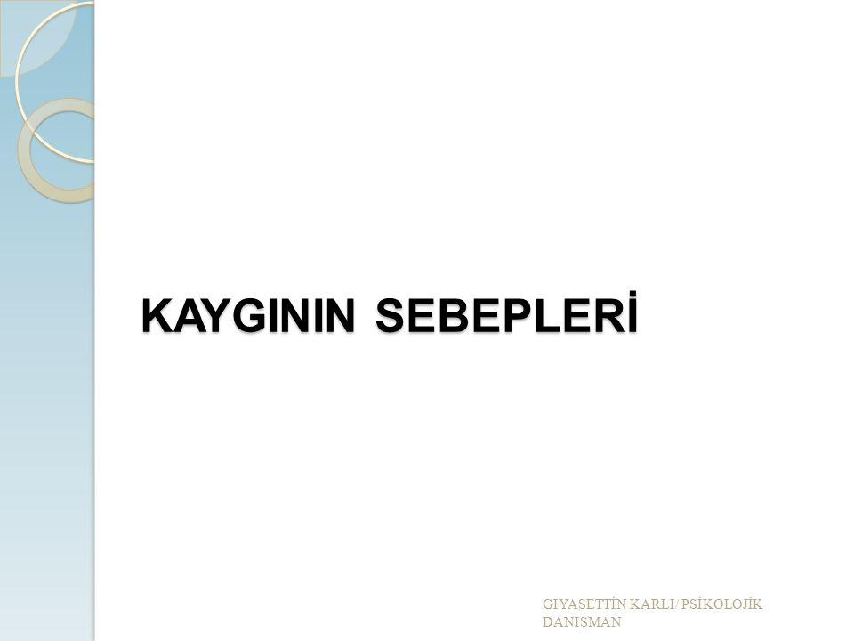 KAYGININ SEBEPLERİ GIYASETT İ N KARLI/ PS İ KOLOJ İ K DANIŞMAN