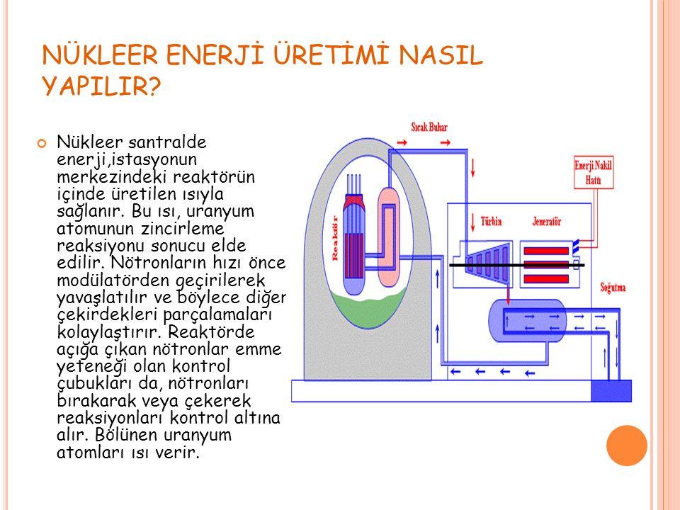 Yetişmiş eleman, atıkların depolanması ve yeterli güvenlik çalışması nükleer santrallerin en önemli sorunlarıdır.