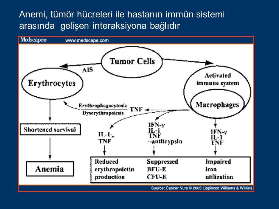 Anemi, tümör hücreleri ile hastanın immün sistemi arasında gelişen interaksiyona bağlıdır