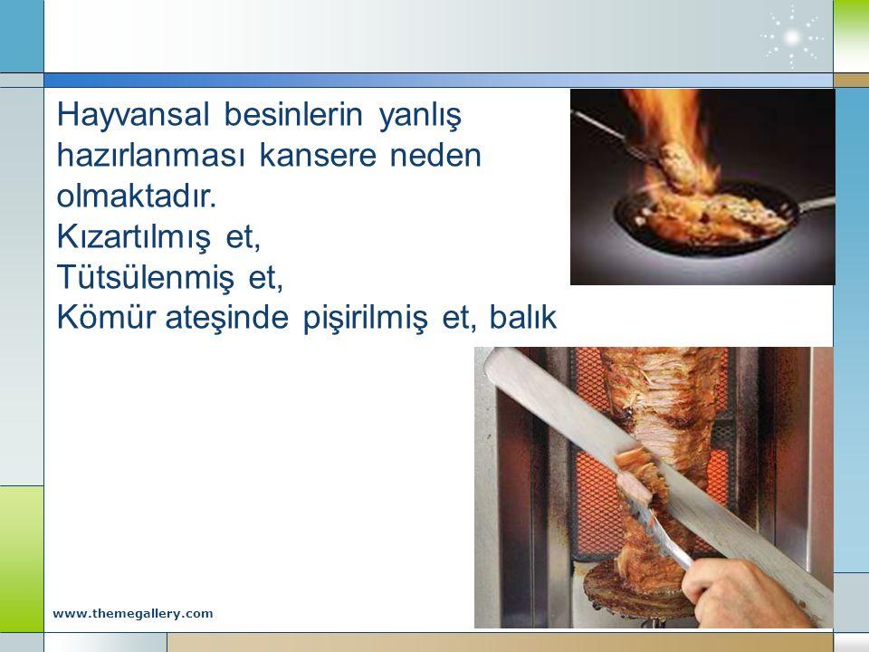 Company Logo www.themegallery.com Hayvansal besinlerin yanlış hazırlanması kansere neden olmaktadır. Kızartılmış et, Tütsülenmiş et, Kömür ateşinde pi