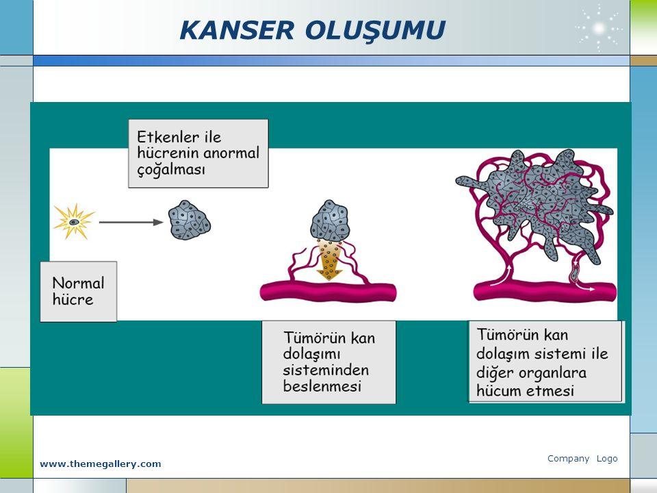 KANSER OLUŞUMU Company Logo www.themegallery.com