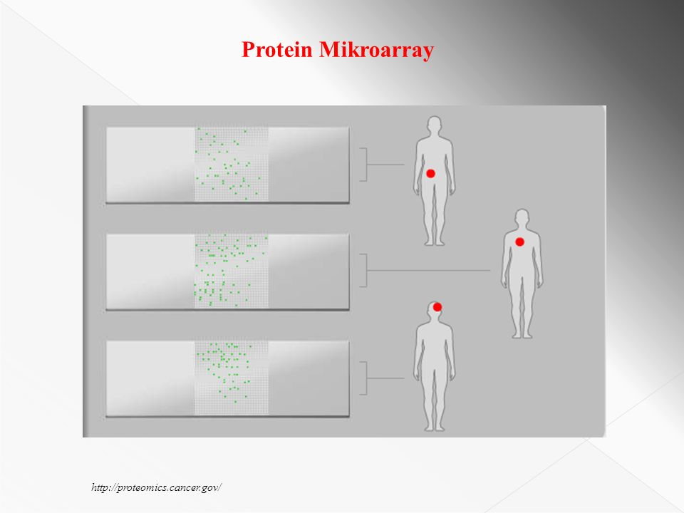 http://proteomics.cancer.gov/ Protein Mikroarray