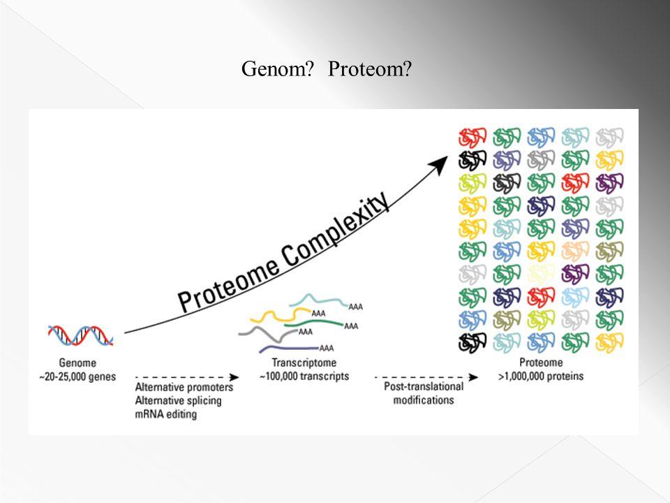 Genom? Proteom?