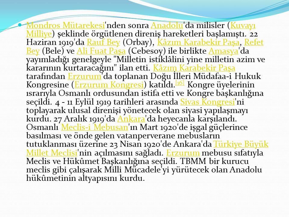 Mondros Mütarekesi nden sonra Anadolu da milisler (Kuvayı Milliye) şeklinde örgütlenen direniş hareketleri başlamıştı.
