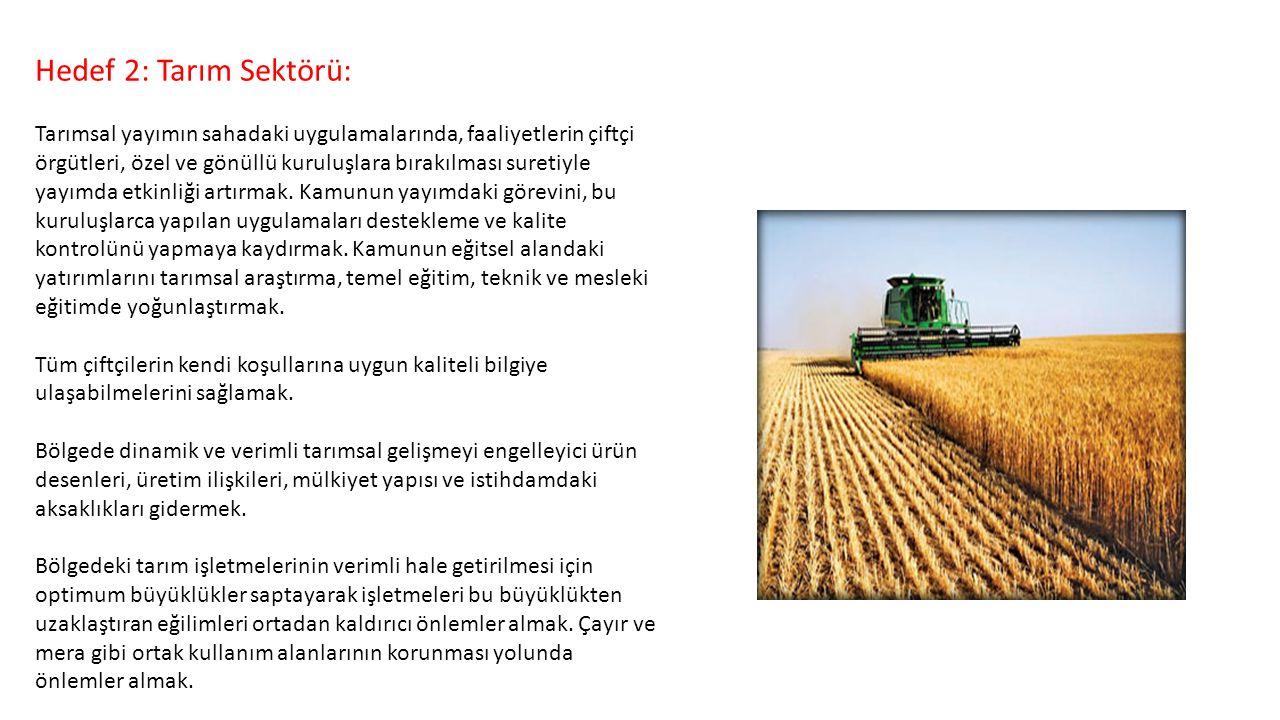 Hedef 2: Tarım Sektörü: Tarımsal yayımın sahadaki uygulamalarında, faaliyetlerin çiftçi örgütleri, özel ve gönüllü kuruluşlara bırakılması suretiyle y