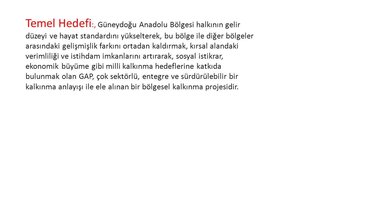 Temel Hedefi :, Güneydoğu Anadolu Bölgesi halkının gelir düzeyi ve hayat standardını yükselterek, bu bölge ile diğer bölgeler arasındaki gelişmişlik f