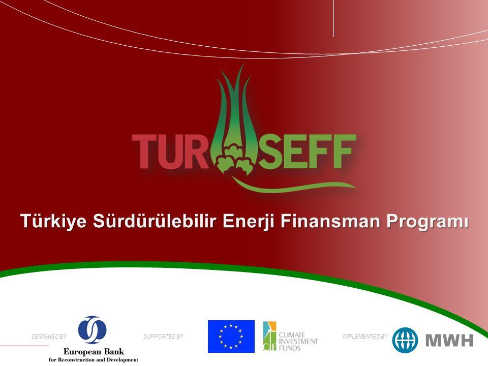 DESIGNED BYSUPPORTED BYIMPLEMENTED BY Türkiye Sürdürülebilir Enerji Finansman Programı