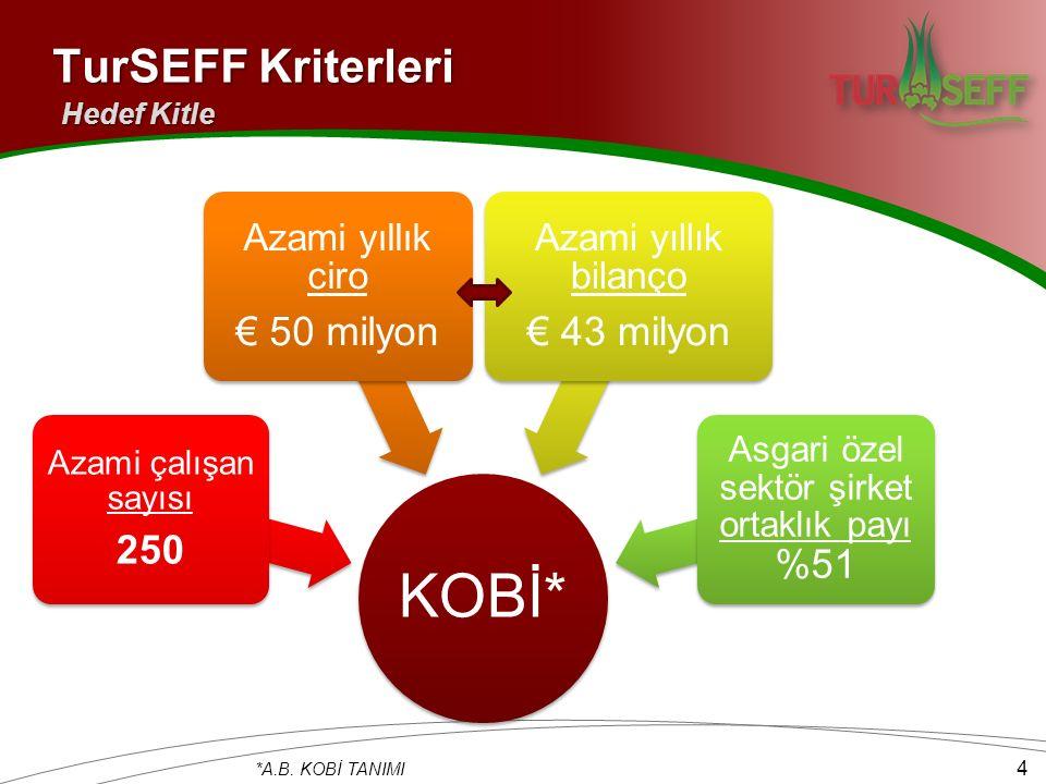 TurSEFF Kriterleri Hedef Kitle KOBİ* Azami çalışan sayısı 250 Azami yıllık ciro € 50 milyon Azami yıllık bilanço € 43 milyon Asgari özel sektör şirket ortaklık payı %51 *A.B.