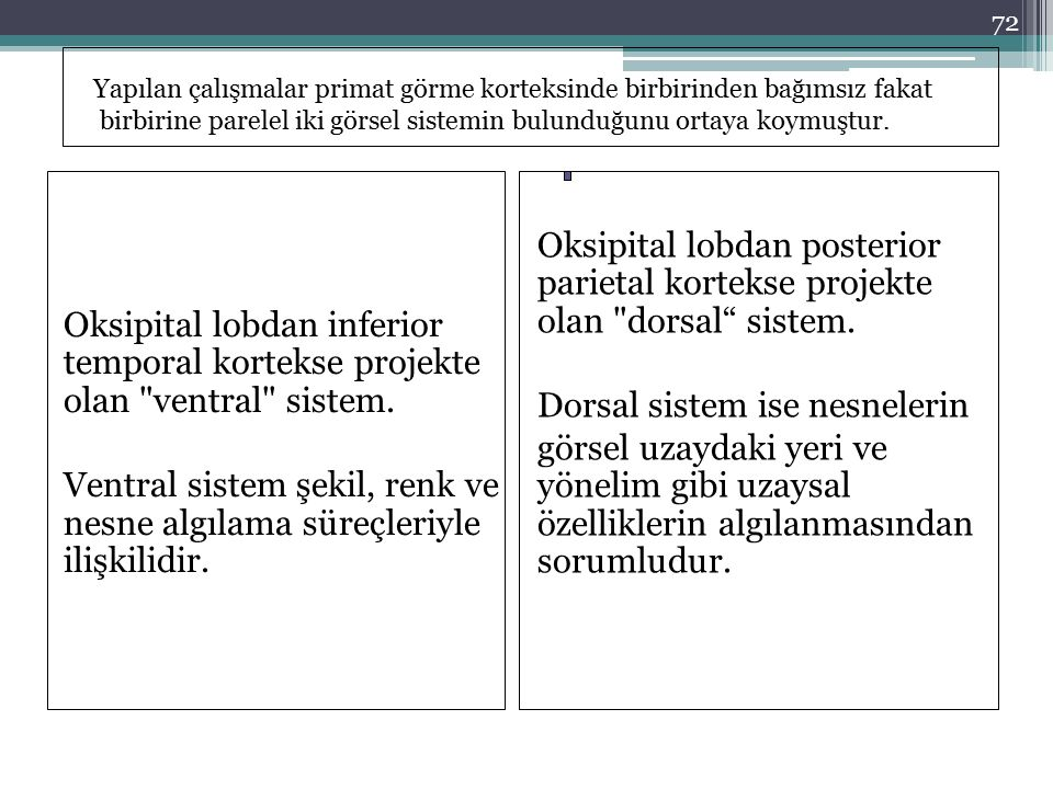 Oksipital lobdan inferior temporal kortekse projekte olan