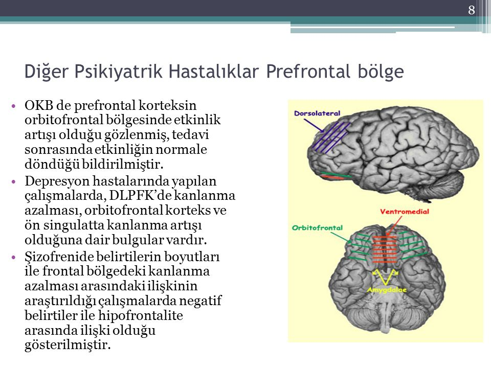 Diğer Psikiyatrik Hastalıklar Prefrontal bölge OKB de prefrontal korteksin orbitofrontal bölgesinde etkinlik artışı olduğu gözlenmiş, tedavi sonrasınd