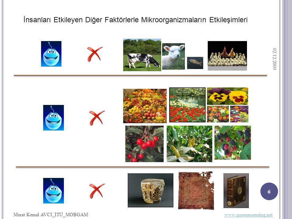 02.12.2009 6 İnsanları Etkileyen Diğer Faktörlerle Mikroorganizmaların Etkileşimleri Murat Kemal AVCI_İTÜ_MOBGAM www.quorumsensing.netwww.quorumsensing.net