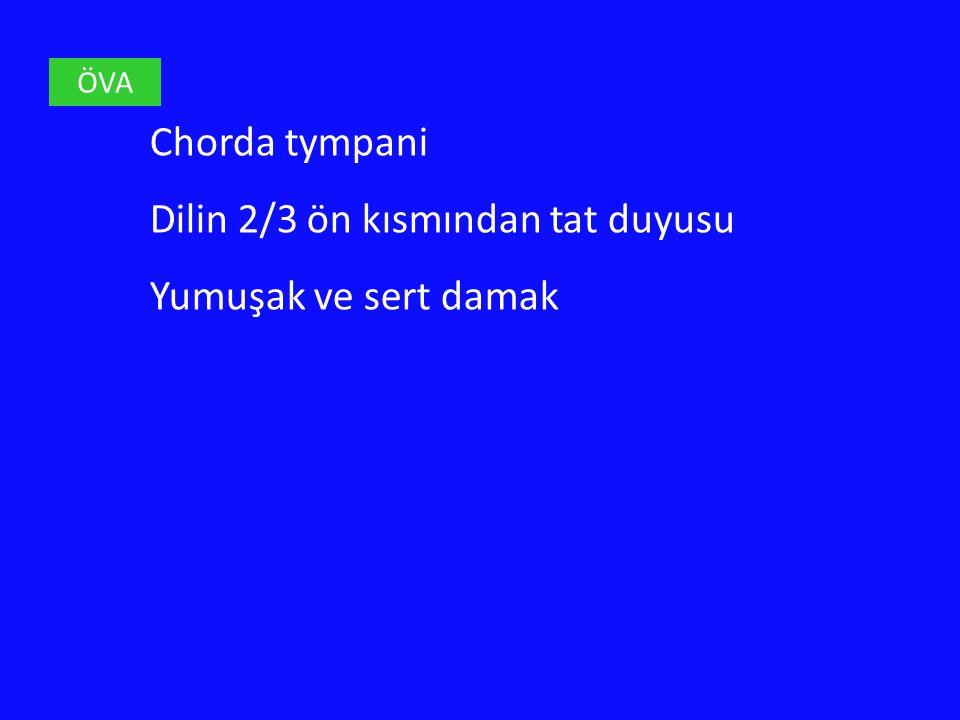 ÖVA Chorda tympani Dilin 2/3 ön kısmından tat duyusu Yumuşak ve sert damak