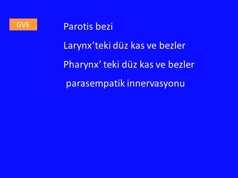 Parotis bezi Larynx'teki düz kas ve bezler Pharynx' teki düz kas ve bezler parasempatik innervasyonu GVE