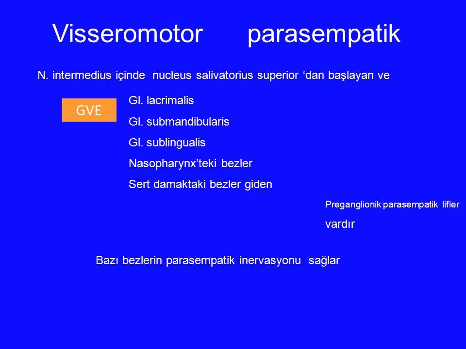 GVE Gl. lacrimalis Gl. submandibularis Gl. sublingualis Nasopharynx'teki bezler Sert damaktaki bezler giden Preganglionik parasempatik lifler vardır N