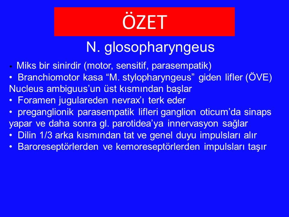 "N. glosopharyngeus Miks bir sinirdir (motor, sensitif, parasempatik) Branchiomotor kasa ""M. stylopharyngeus"" giden lifler (ÖVE) Nucleus ambiguus'un üs"