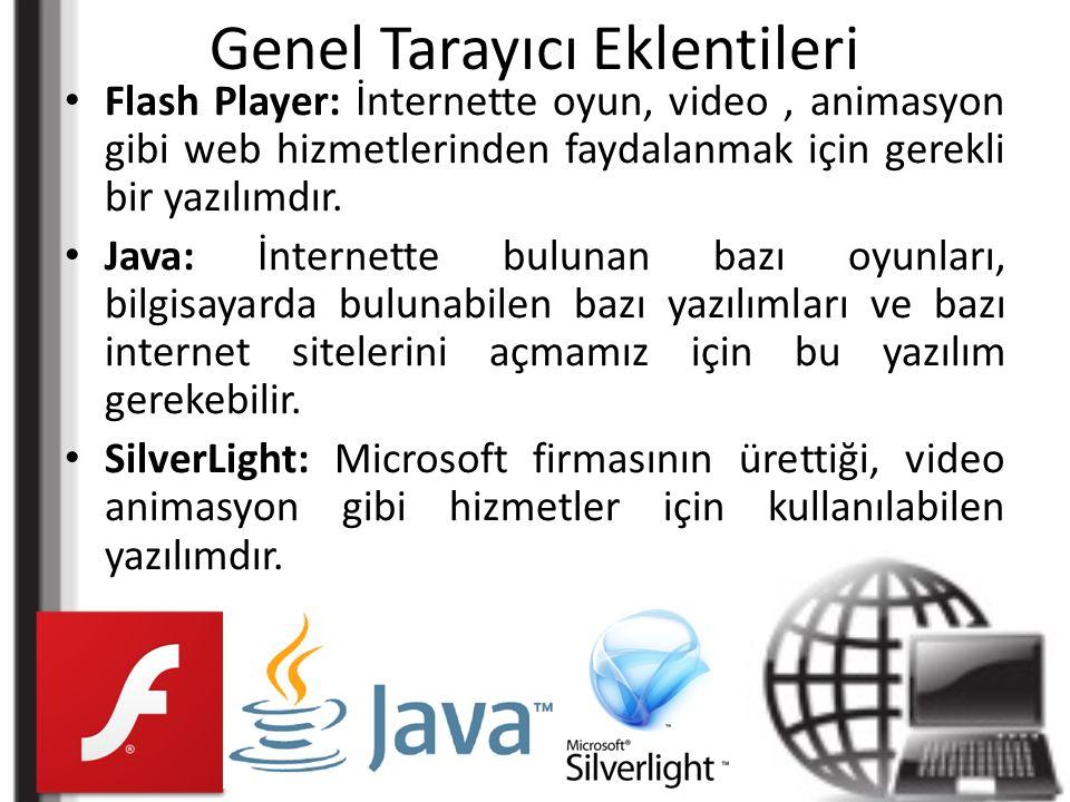 Genel Tarayıcı Eklentileri Flash Player: İnternette oyun, video, animasyon gibi web hizmetlerinden faydalanmak için gerekli bir yazılımdır.
