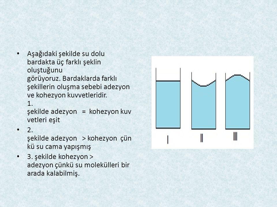 Aşağıdaki şekilde su dolu bardakta üç farklı şeklin oluştuğunu görüyoruz. Bardaklarda farklı şekillerin oluşma sebebi adezyon ve kohezyon kuvvetleridi