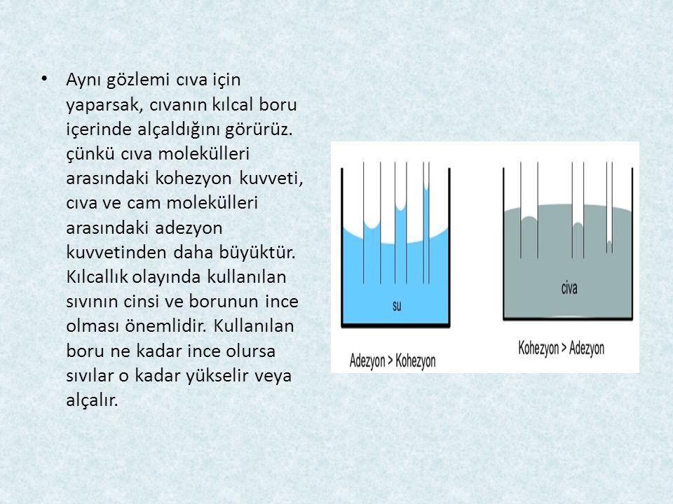 Aynı gözlemi cıva için yaparsak, cıvanın kılcal boru içerinde alçaldığını görürüz. çünkü cıva molekülleri arasındaki kohezyon kuvveti, cıva ve cam mol