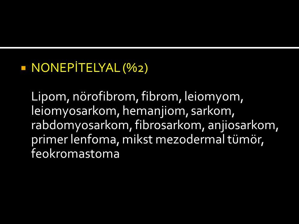  NONEPİTELYAL (%2) Lipom, nörofibrom, fibrom, leiomyom, leiomyosarkom, hemanjiom, sarkom, rabdomyosarkom, fibrosarkom, anjiosarkom, primer lenfoma, m