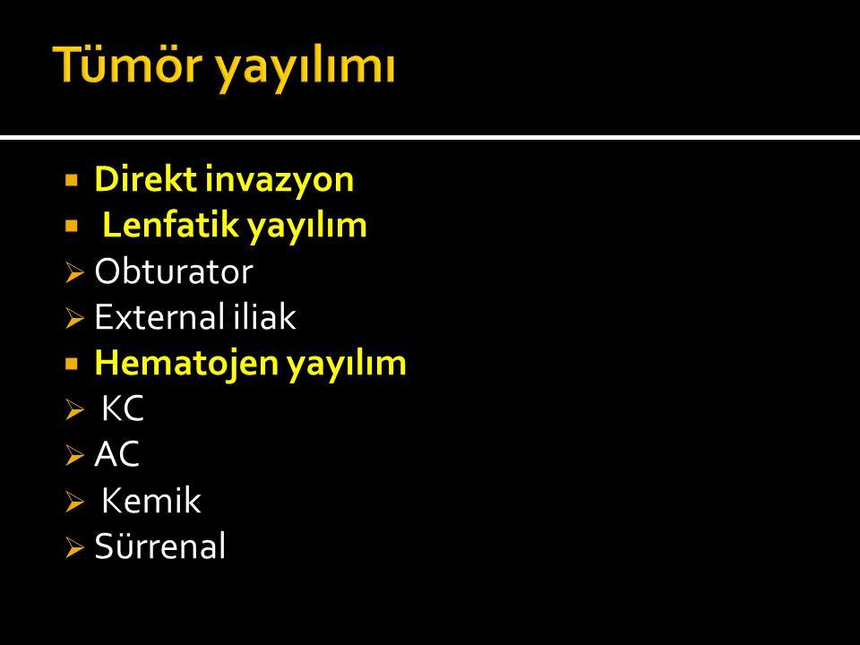  Direkt invazyon  Lenfatik yayılım  Obturator  External iliak  Hematojen yayılım  KC  AC  Kemik  Sürrenal