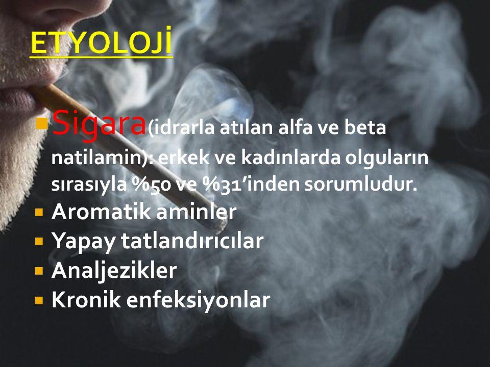 Sigara (idrarla atılan alfa ve beta natilamin): erkek ve kadınlarda olguların sırasıyla %50 ve %31'inden sorumludur.