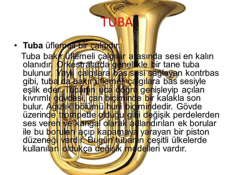 TUBA Tuba üflemeli bir çalgıdır. Tuba bakır üflemeli çalgılar arasında sesi en kalın olanıdır. Orkestralarda genellikle bir tane tuba bulunur. Yaylı ç
