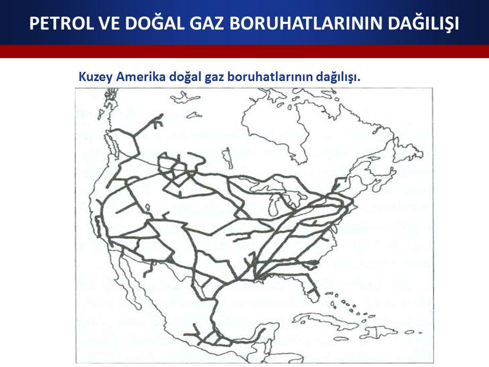 PETROL VE DOĞAL GAZ BORUHATLARININ DAĞILIŞI Kuzey Amerika doğal gaz boruhatlarının dağılışı.