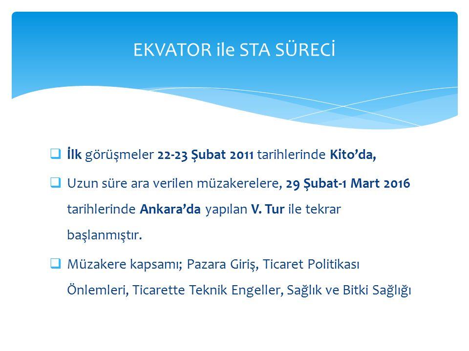  İlk görüşmeler 22-23 Şubat 2011 tarihlerinde Kito'da,  Uzun süre ara verilen müzakerelere, 29 Şubat-1 Mart 2016 tarihlerinde Ankara'da yapılan V.