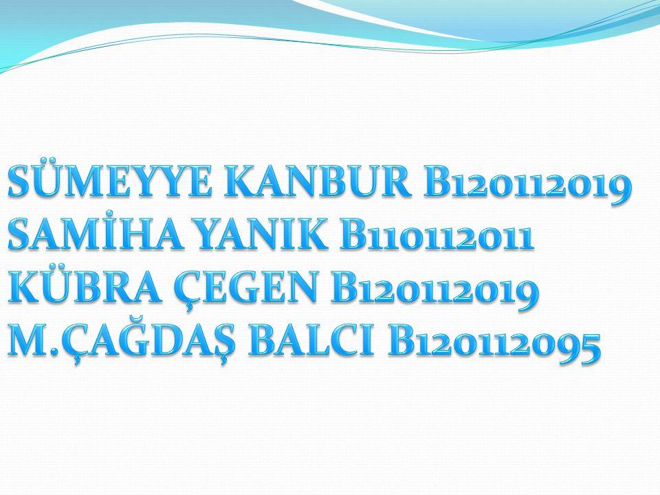 Türkiye deki jeotermal alanların %55 i ısıtma uygulamalarına uygundur.