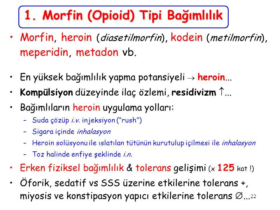 22 1. Morfin (Opioid) Tipi Bağımlılık Morfin, heroin (diasetilmorfin), kodein (metilmorfin), meperidin, metadon vb. En yüksek bağımlılık yapma potansi