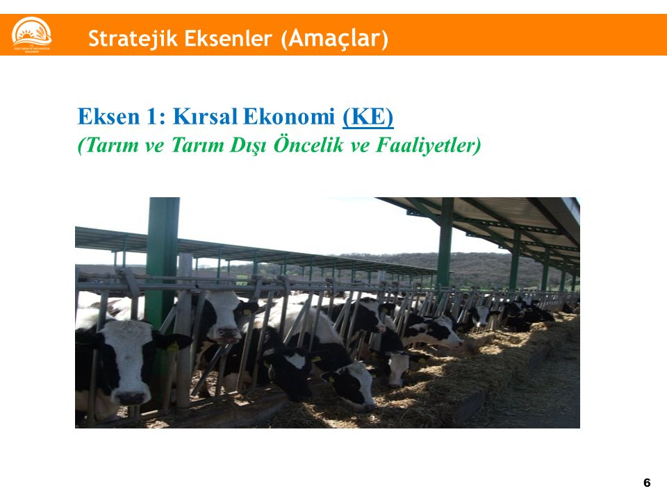 6 Eksen 1: Kırsal Ekonomi (KE) (Tarım ve Tarım Dışı Öncelik ve Faaliyetler) Stratejik Eksenler ( Amaçlar )