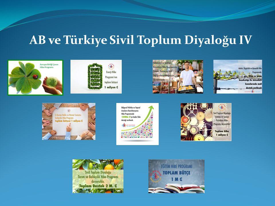 AB ve Türkiye Sivil Toplum Diyaloğu IV