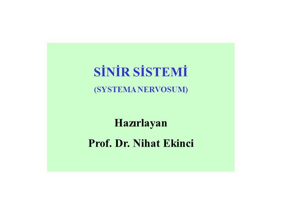 Simpatik sistem (pars sympathica): Enerji kaynaklarını harcamak suretiyle potansiyel enerjinin kinetik enerji haline çevrilmesini sağlar.
