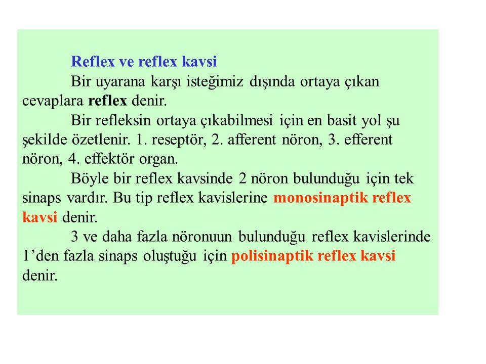 Reflex ve reflex kavsi Bir uyarana karşı isteğimiz dışında ortaya çıkan cevaplara reflex denir. Bir refleksin ortaya çıkabilmesi için en basit yol şu