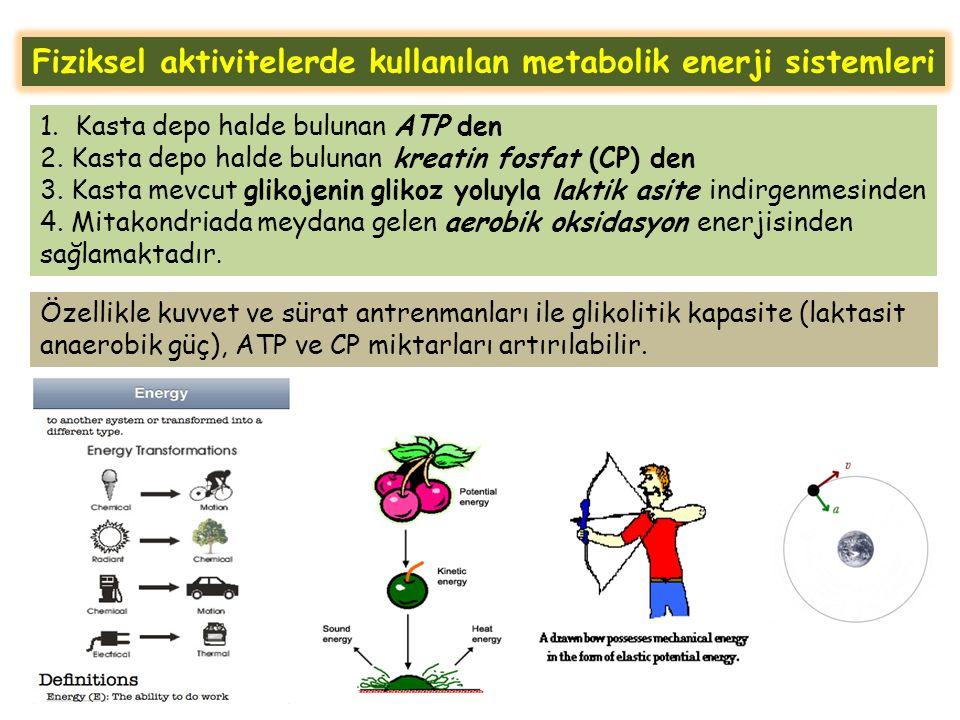 Fiziksel aktivitelerde kullanılan metabolik enerji sistemleri 1.