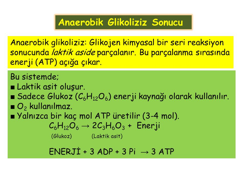 Anaerobik Glikoliziz Sonucu Bu sistemde; ■ Laktik asit oluşur.
