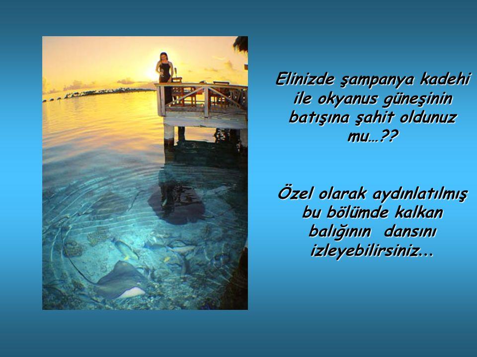 Elinizde şampanya kadehi ile okyanus güneşinin batışına şahit oldunuz mu… .