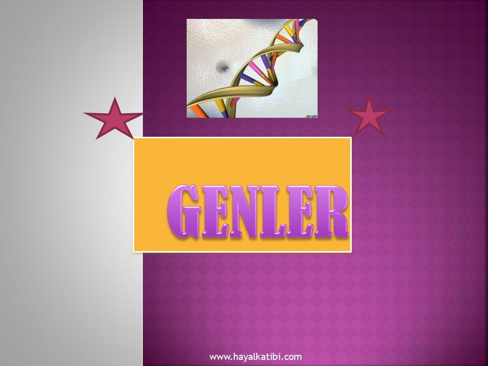  Gen DNA zincirindeki belli bir uzunluktaki birimdir.