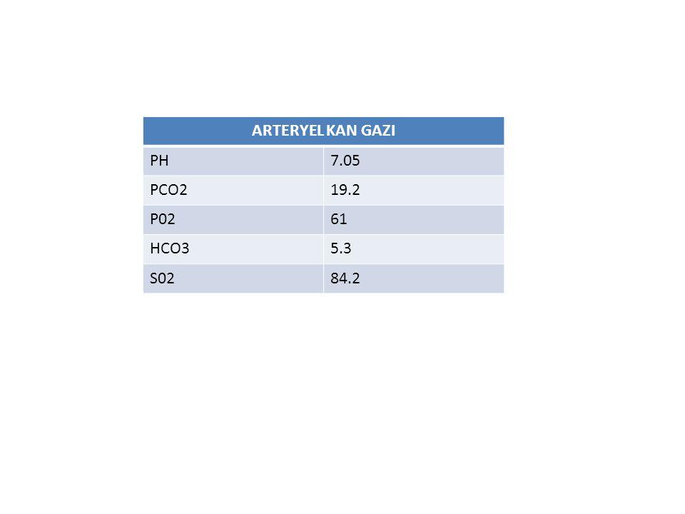 ARTERYEL KAN GAZI PH7.05 PCO219.2 P0261 HCO35.3 S0284.2