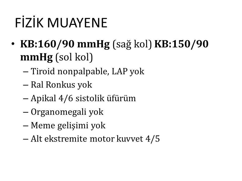 FİZİK MUAYENE KB:160/90 mmHg (sağ kol) KB:150/90 mmHg (sol kol) – Tiroid nonpalpable, LAP yok – Ral Ronkus yok – Apikal 4/6 sistolik üfürüm – Organome