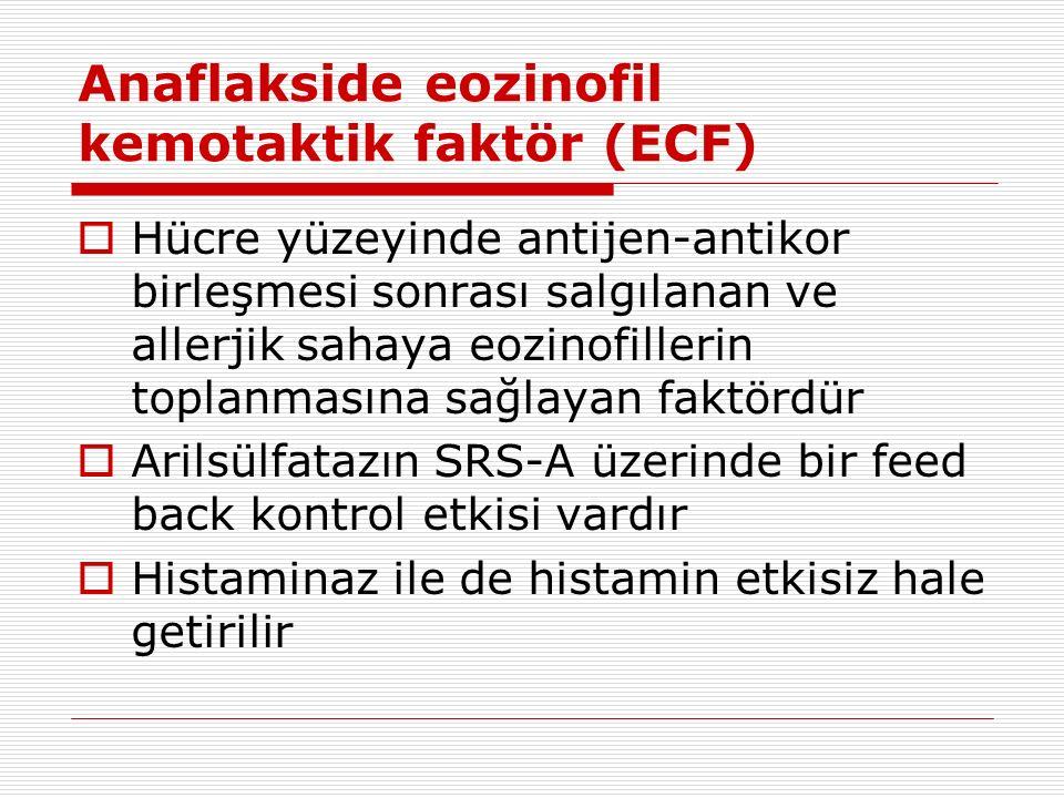Anaflakside eozinofil kemotaktik faktör (ECF)  Hücre yüzeyinde antijen-antikor birleşmesi sonrası salgılanan ve allerjik sahaya eozinofillerin toplanmasına sağlayan faktördür  Arilsülfatazın SRS-A üzerinde bir feed back kontrol etkisi vardır  Histaminaz ile de histamin etkisiz hale getirilir