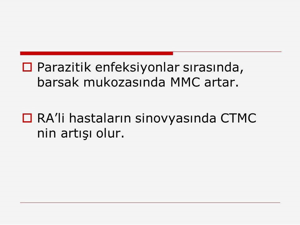  Parazitik enfeksiyonlar sırasında, barsak mukozasında MMC artar.