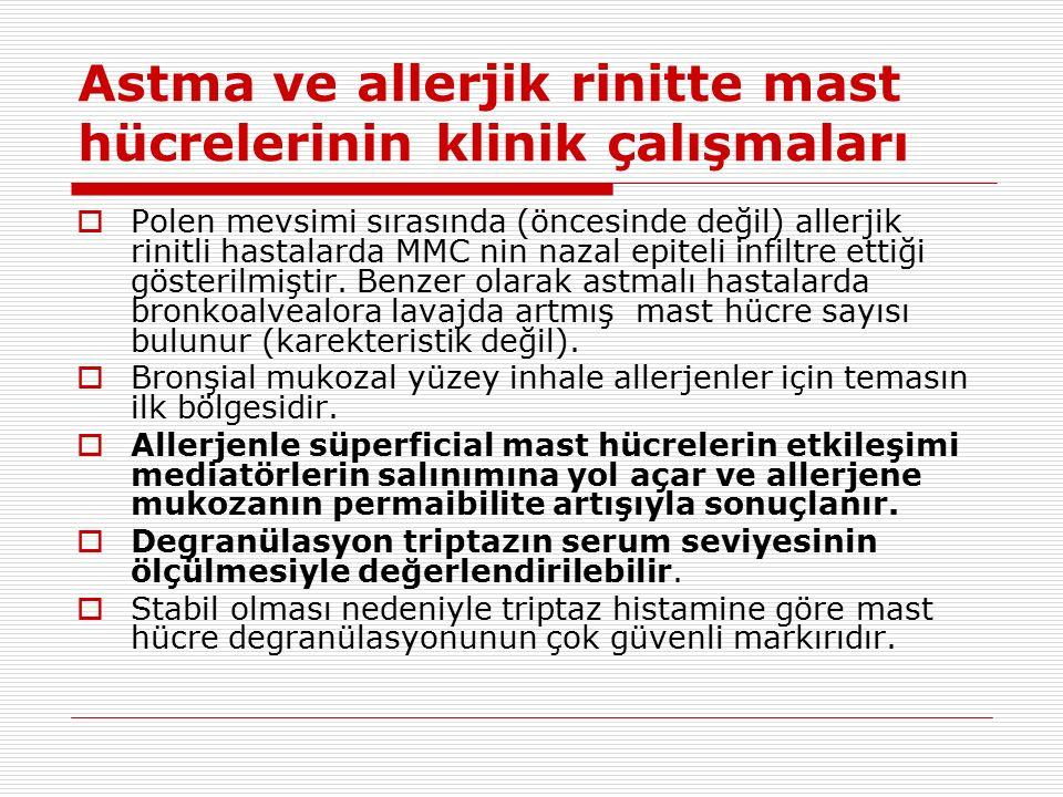 Astma ve allerjik rinitte mast hücrelerinin klinik çalışmaları  Polen mevsimi sırasında (öncesinde değil) allerjik rinitli hastalarda MMC nin nazal epiteli infiltre ettiği gösterilmiştir.
