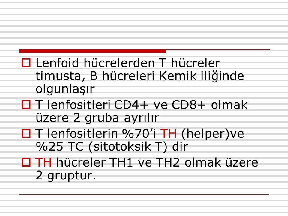  Lenfoid hücrelerden T hücreler timusta, B hücreleri Kemik iliğinde olgunlaşır  T lenfositleri CD4+ ve CD8+ olmak üzere 2 gruba ayrılır  T lenfositlerin %70'i TH (helper)ve %25 TC (sitotoksik T) dir  TH hücreler TH1 ve TH2 olmak üzere 2 gruptur.