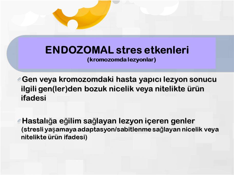 ENDOZOMAL stres etkenleri (kromozomda lezyonlar) Gen veya kromozomdaki hasta yapıcı lezyon sonucu ilgili gen(ler)den bozuk nicelik veya nitelikte ürün ifadesi Hastalı ğ a e ğ ilim sa ğ layan lezyon içeren genler (stresli ya ş amaya adaptasyon/sabitlenme sa ğ layan nicelik veya nitelikte ürün ifadesi) (stresli ya ş amaya adaptasyon/sabitlenme sa ğ layan nicelik veya nitelikte ürün ifadesi)