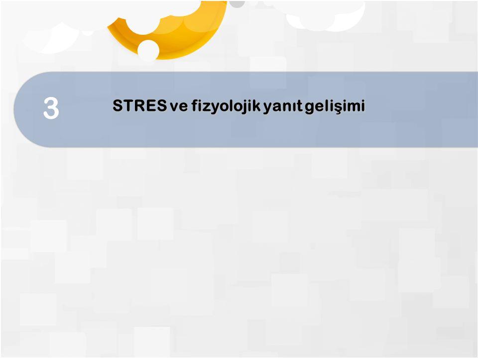 3 STRES ve fizyolojik yanıt geli ş imi