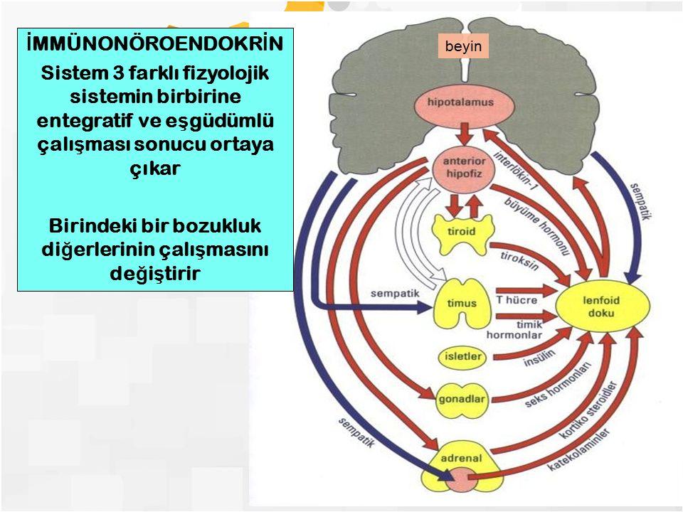 İ MMÜNONÖROENDOKR İ N Sistem 3 farklı fizyolojik sistemin birbirine entegratif ve e ş güdümlü çalı ş ması sonucu ortaya çıkar Birindeki bir bozukluk d