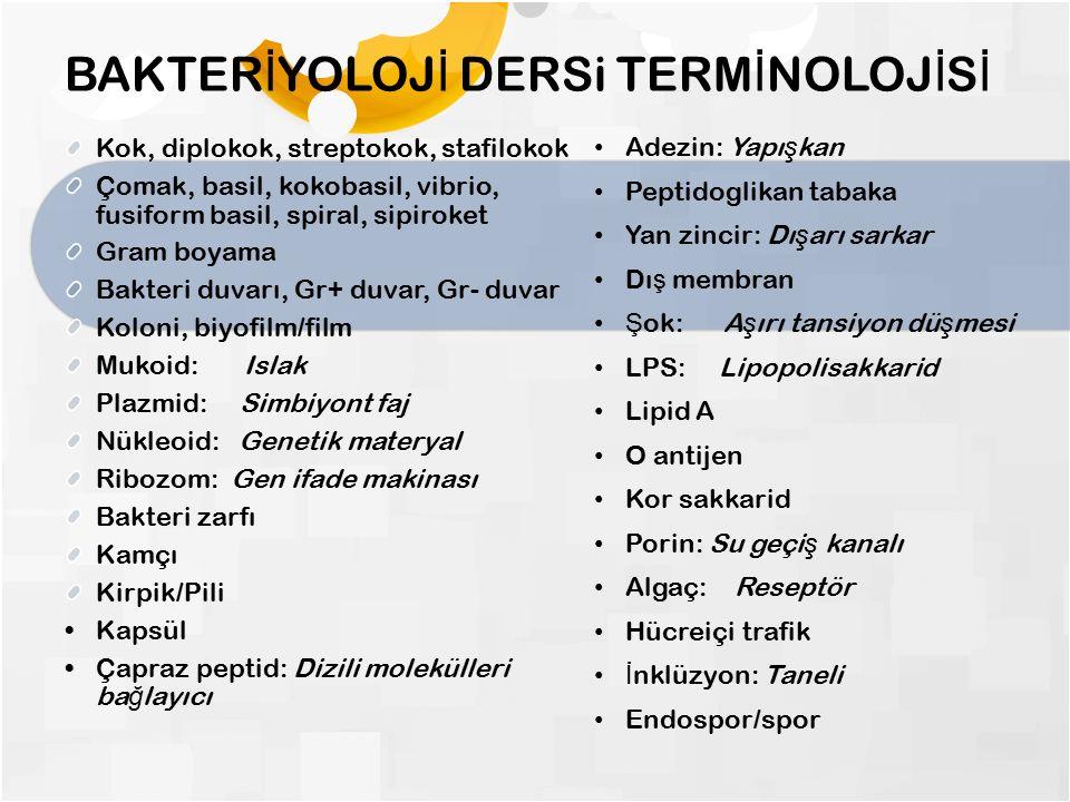 BAKTER İ YOLOJ İ DERSi TERM İ NOLOJ İ S İ Kok, diplokok, streptokok, stafilokok Çomak, basil, kokobasil, vibrio, fusiform basil, spiral, sipiroket Gram boyama Bakteri duvarı, Gr+ duvar, Gr- duvar Koloni, biyofilm/film Mukoid: Islak Plazmid: Simbiyont faj Nükleoid: Genetik materyal Ribozom: Gen ifade makinası Bakteri zarfı Kamçı Kirpik/Pili Kapsül Çapraz peptid: Dizili molekülleri ba ğ layıcı Adezin: Yapı ş kan Peptidoglikan tabaka Yan zincir: Dı ş arı sarkar Dı ş membran Ş ok: A ş ırı tansiyon dü ş mesi LPS: Lipopolisakkarid Lipid A O antijen Kor sakkarid Porin: Su geçi ş kanalı Algaç: Reseptör Hücreiçi trafik İ nklüzyon: Taneli Endospor/spor